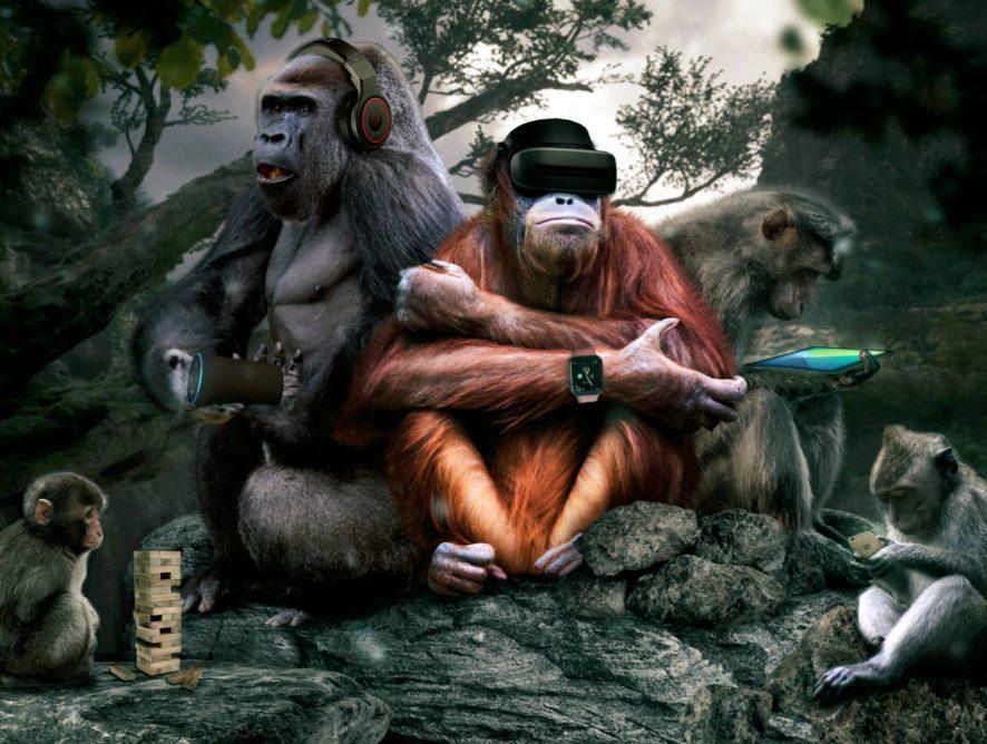 diese Affen …